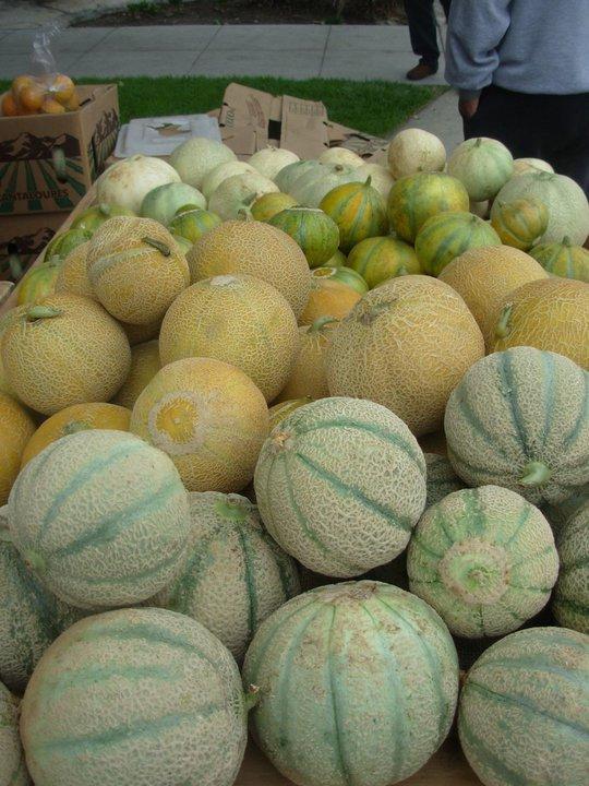 weiser melons