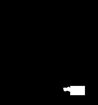 BHLogoBlack